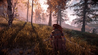 Horizon Zero Dawn™_20170304214309